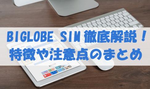 BIGLOBE SIMレビュー記事のサムネイル画像