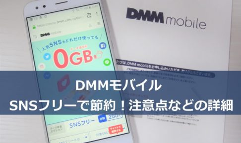 DMMモバイル SNSフリーの詳細